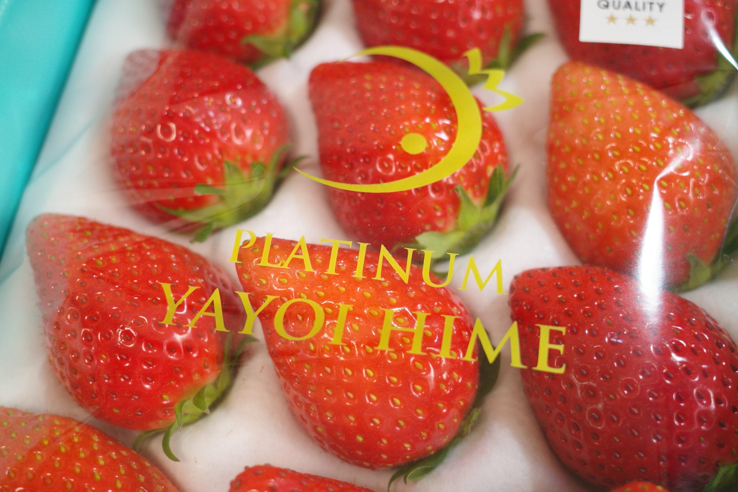 nakano.strawberryfarm