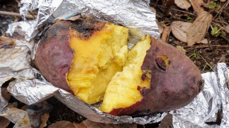 焼き芋について考えてみた件と非公認観光大使就任の件