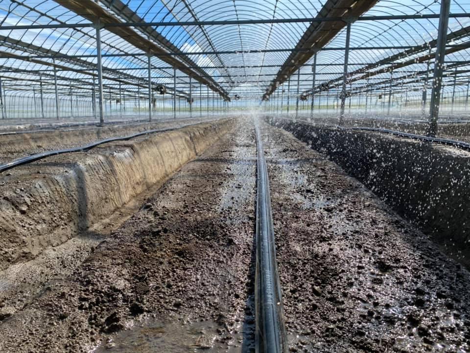 土壌に水分を含ませるところからやり直し